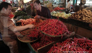 Jokowi tanya KPPU penyebab harga pangan tinggi